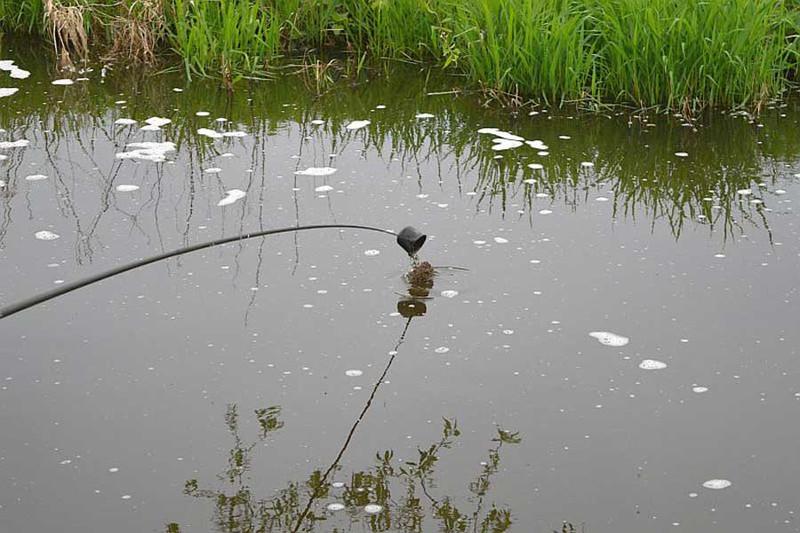 Ловля крупной плотвы на малых реках. Фото 2