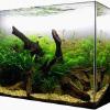 Быстрое оформление аквариума за 30 минут