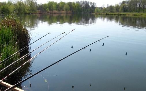 наша рыбалка