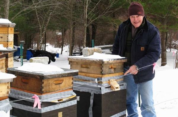 Работа с пчелами зимой