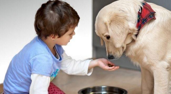 Будешь заботиться, чтобы твой новый друг всегда был накормлен. И добавь, что ты тоже будешь хорошо кушать