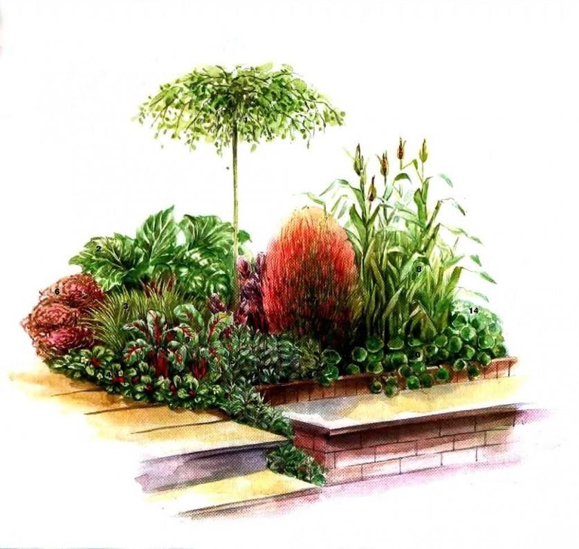 vegetables-in-planting-07