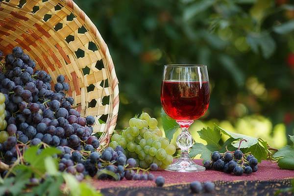 Оптимальная почва для винограда