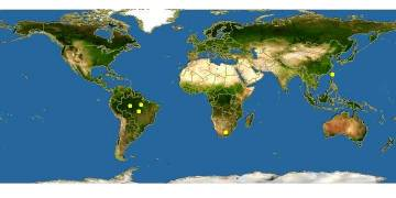 Ареал обитания Тетры Керри - Южная Америка.