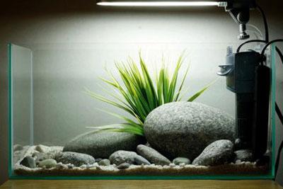 Устанавливаем фильтр и лампы в аквариум