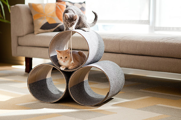 Домики для кошек из картона и ткани цилиндрической формы