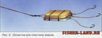 Ловля сазана, места ловли сазана, питание сазана, насадки для сазана, ловля сазана с лодки, насадки для ловли сазана