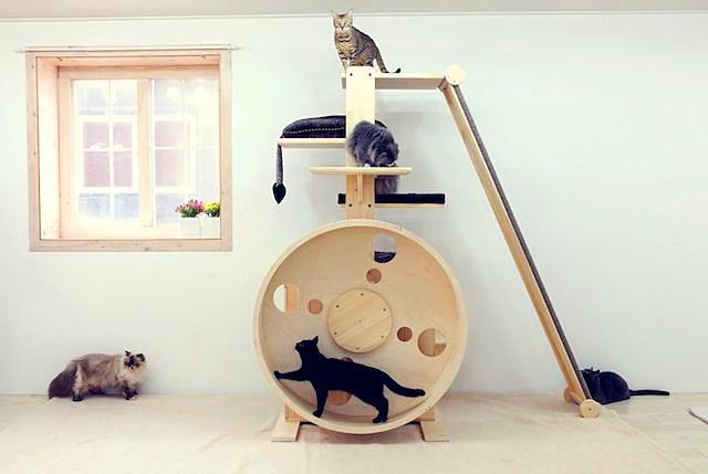 Игровой комплекс – отличное средство для развлечения кошек