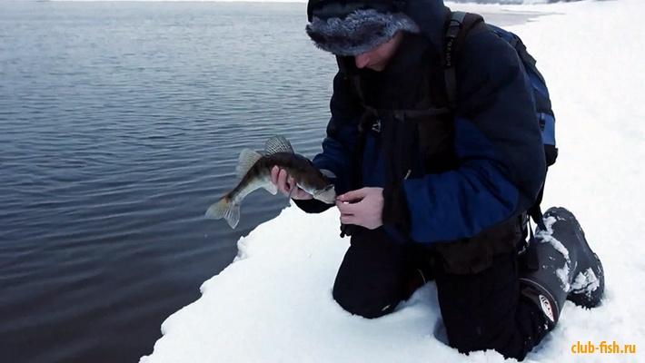 Тактика ловли зимой на открытой воде.