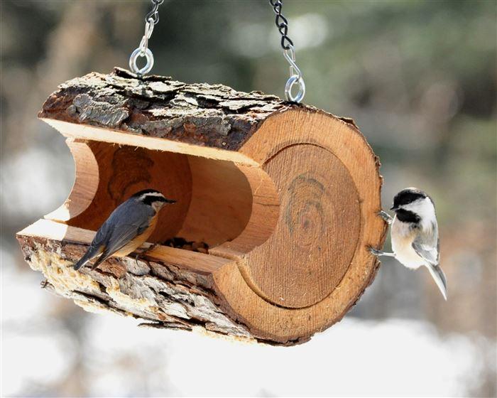 Оригинальные кормушки для птиц своими руками из подручных материалов с фото
