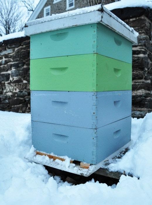 Улей пчелиный на снегу