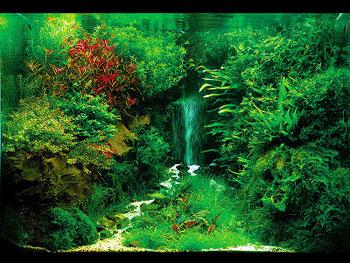 оформление водопада в аквариуме