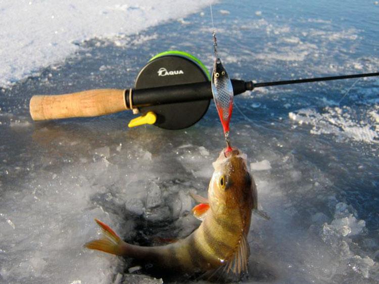 удочки для ловли рыбы на блесну