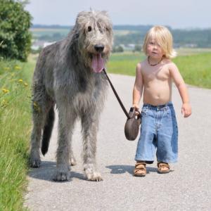 собака, ребенок, кого заводить, стоит ли,