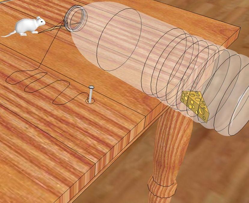 как сделать мышеловку
