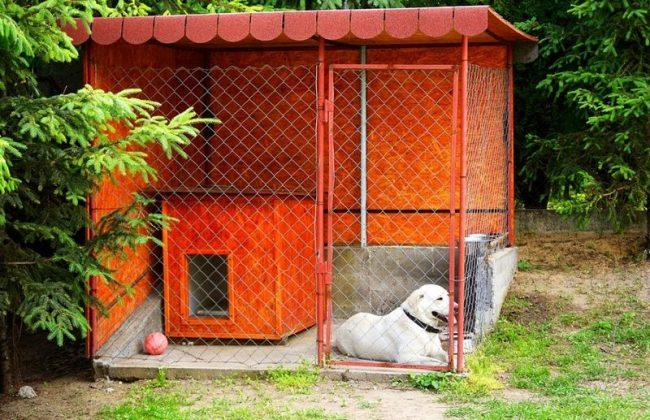 Вольеры для собак – это не просто часть участка, огороженная сеткой-рабицей. Это, по сути, жилище собаки, где ей должно быть комфортно. Она в вольере будет проводить большую часть дня, прятаться от солнечных лучей, дождя и мороза, гулять, кушать, справлять естественную нужду отдыхать, прогуливаться
