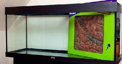 Задний фон в оформлении аквариума