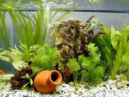 Керамическая декорация в аквариуме
