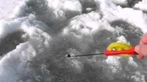 Зимняя ловля окуня на мормышку полезные советы